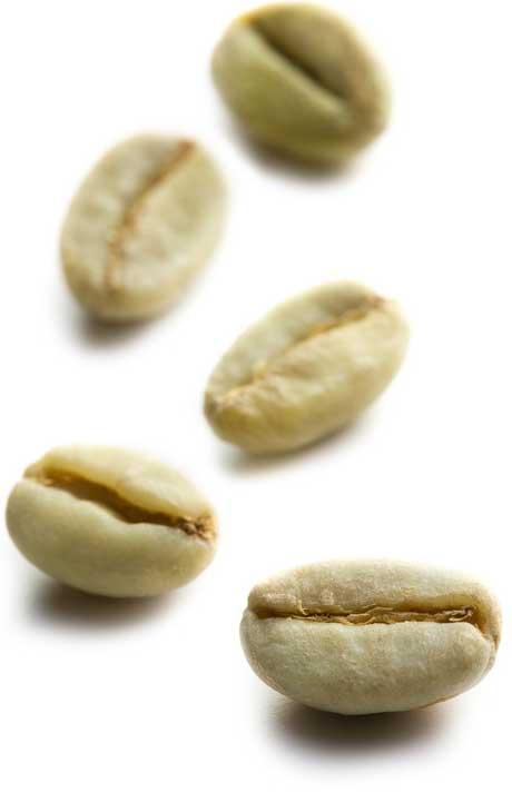 Poids D Un Grain De Cafe Non Torrefie